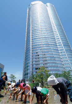 Image Photo of Roppongi Hills Mori Tower8